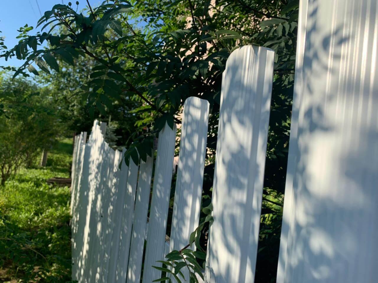 забор из штакетника белый фото4